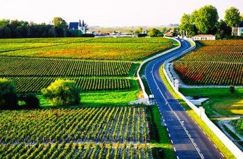 Lembranças de Bordeaux e memórias da família Guignard, de Graves, que produz vinhos há mais de 400 anos