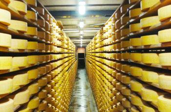 Gruyère: queijos e vinhos em um vilarejo encantado com um museu e um bar para alienígenas