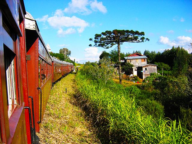 trem e paisagem 1