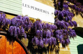 Uma visita à Domaine Les Perrières, em Satigny, Suiça, para degustar vinhos de uvas francesas, produzidos por portugueses, com enólogo suiço.